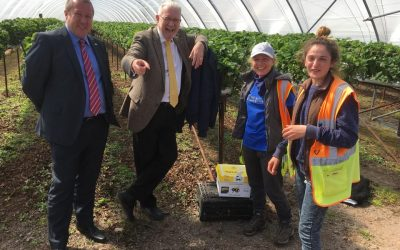 SRUC Surveys on Seasonal Workers