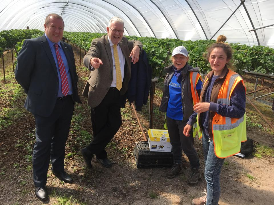 Visiting Angus Growers East Seaton operation with Michael Russell MSP, Minister for UK Negotiations on Scotland's Place in Europe, today to hear from the firm and its migrant workers over their concerns about the impact of Brexit.