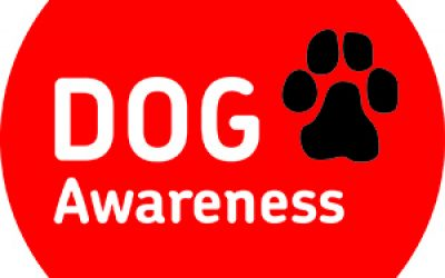Graeme Dey MSP Backs Royal Mail's Dog Awareness Week