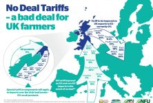 """MSP: ANGUS FARMERS """"BETRAYED"""" BY TORIES' NO DEAL PLANNING"""