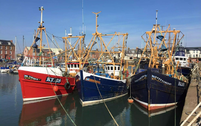 Supporting The Seafood Sector