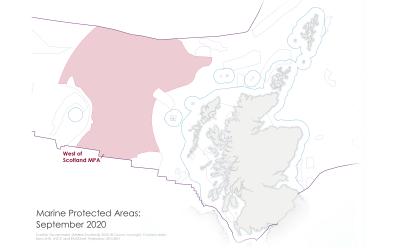 Protecting Scotland's Marine Environment