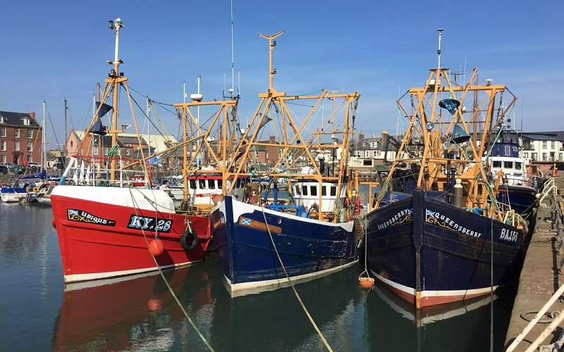 SUPPORT FOR SEAFOOD INDUSTRY